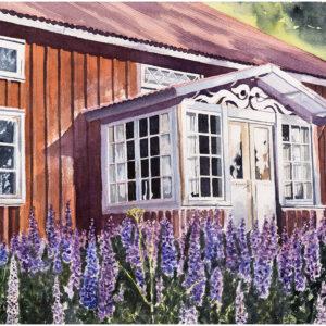 Ödehus med lupiner akvarell 33x50cm - Mats Ljungbacke